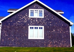 Scraping The Surface Of Exterior Paint Prep Buildinggreen
