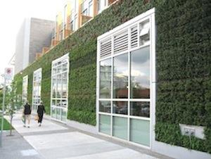 Green Walls For Greener Cities Buildinggreen