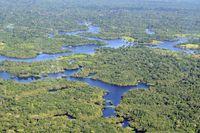 Amazon rainforest aerial