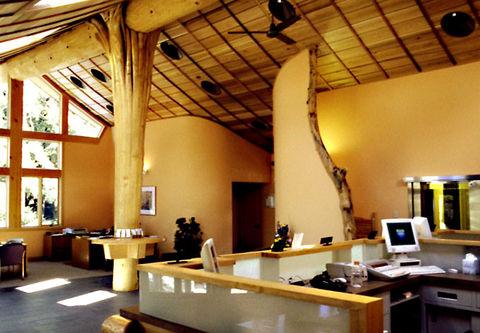 Biophilic Interior Design Concept 4