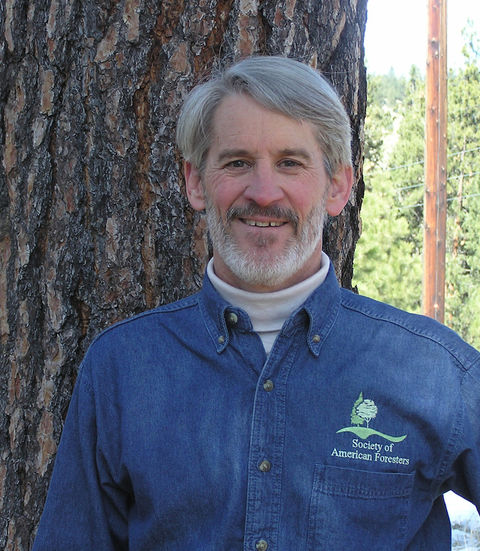 Dave Atkins, Treesource