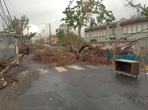 Hurricane Maria destroyed powerlines across Puerto Rico.