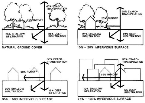 Stormwater Management: Environmentally Sound Approaches