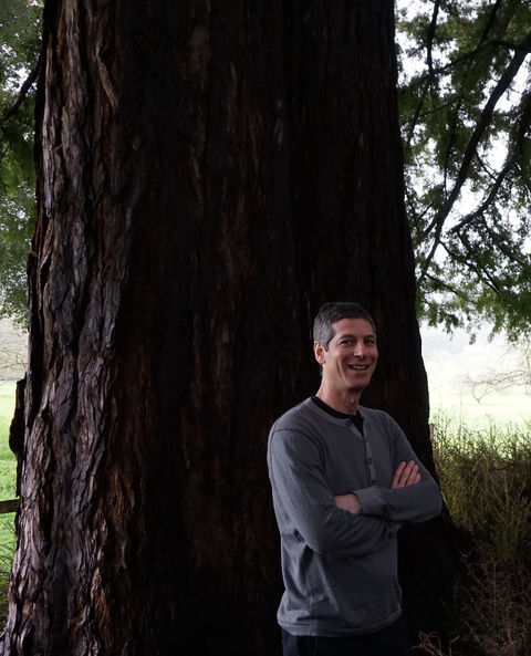Nadav Malin, Hon. AIA, among the redwoods