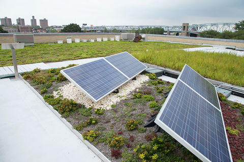 Green Roofs Improve Solar Panel Efficiency